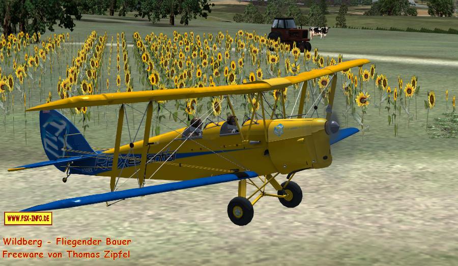 fliegenderbauer6