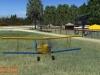 fliegenderbauer8